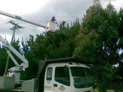 EWP_Clearing_Trees_from_Powerlines_1.jpg